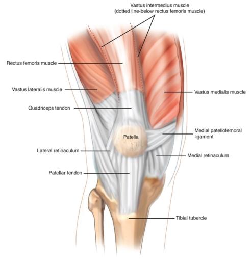 Knee Image_MPFL